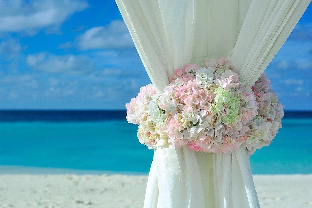 Flowers with a curtain on the beach