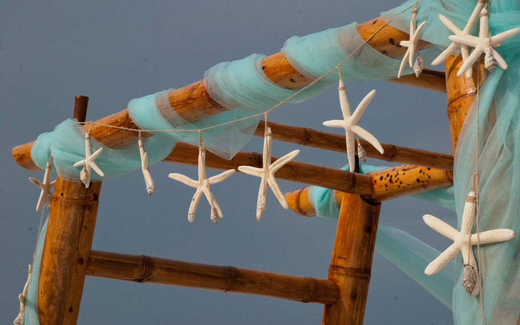 starfish wedding in turquoise