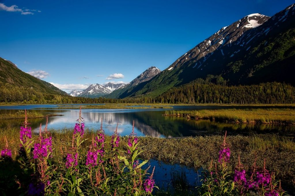 chugach-national-forest-